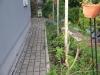 Stari vrt (zacetek del)